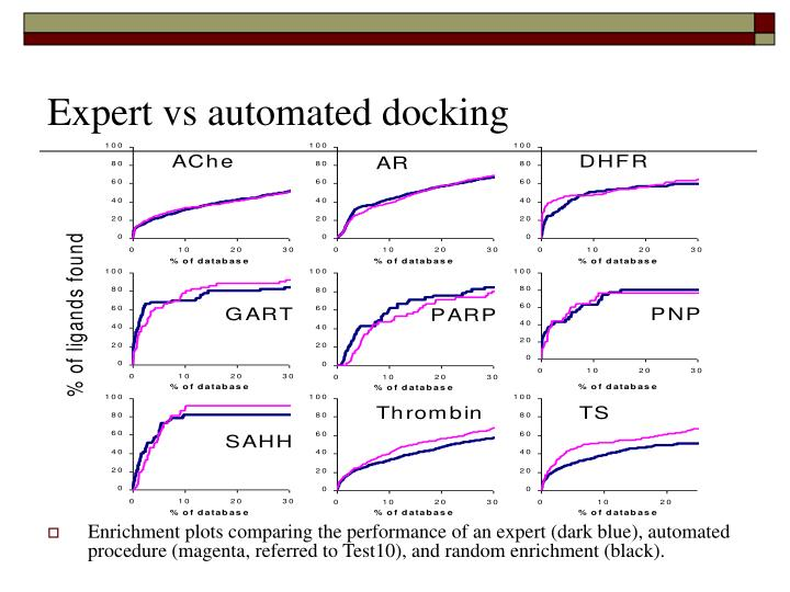 Expert vs automated docking