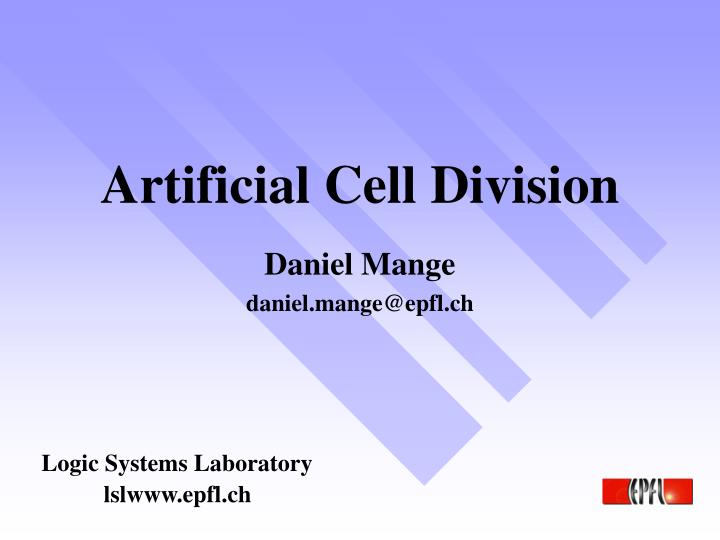 Artificial cell division
