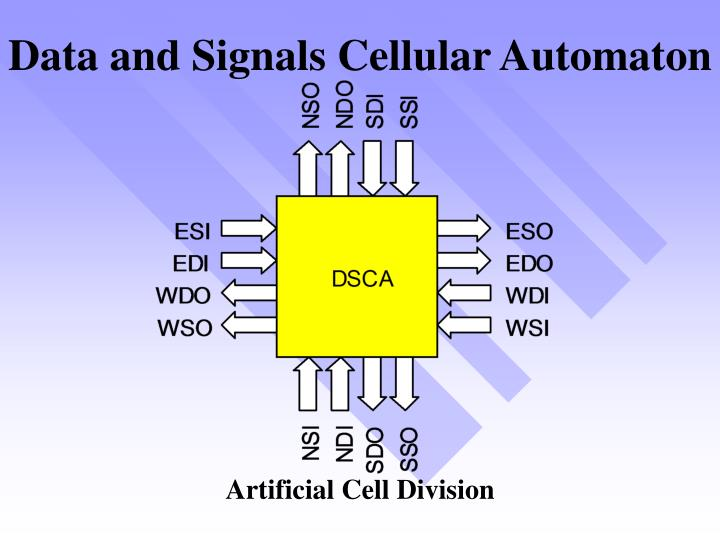 Data and Signals Cellular Automaton