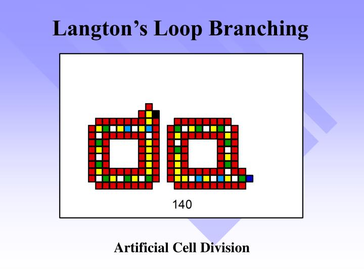 Langton's Loop Branching