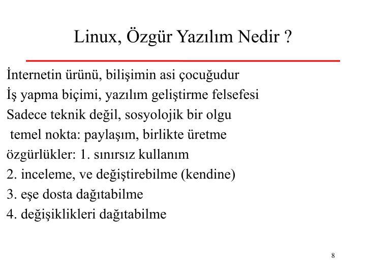 Linux, Özgür Yazılım Nedir ?