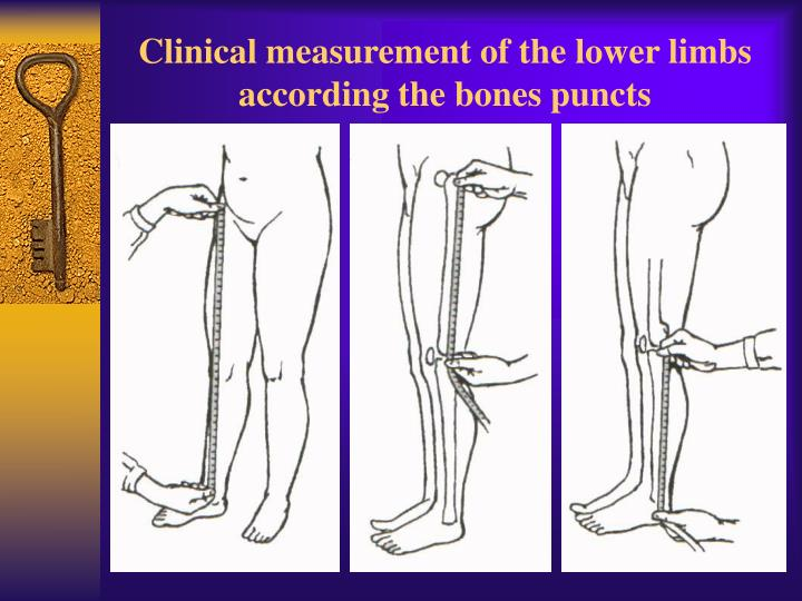 Clinical measurement of the lower limbs according the bones puncts