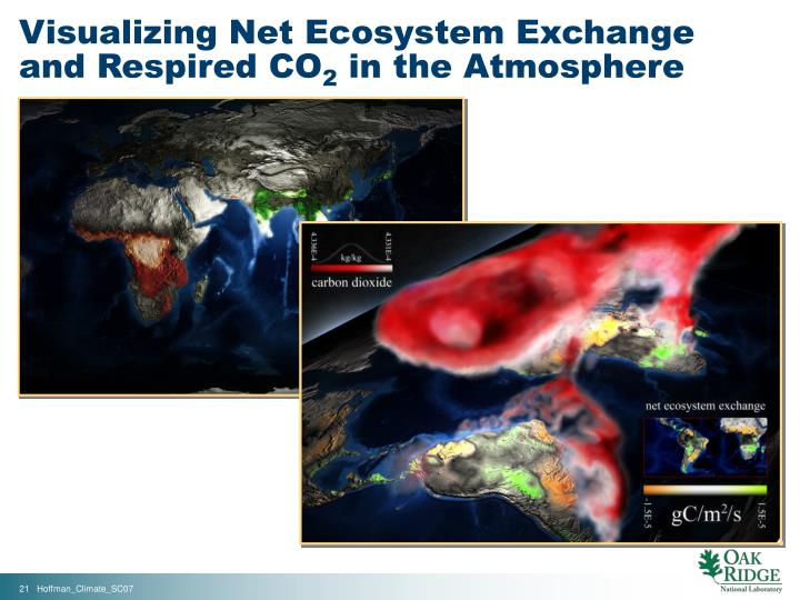 Visualizing Net Ecosystem Exchange and Respired CO