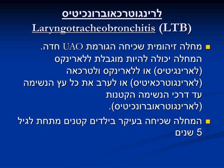 לרינגוטרכאוברונכיטיס