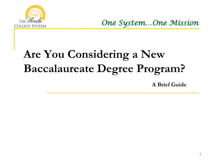 Are you considering a new baccalaureate degree program a brief guide