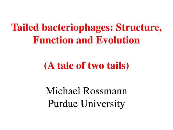 Tailed bacteriophages: Structure, Function and Evolution