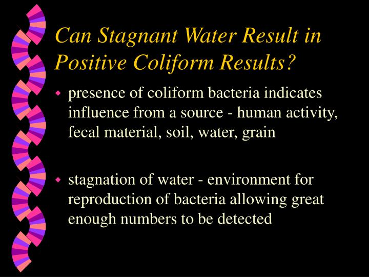 Can Stagnant Water Result in Positive Coliform Results?