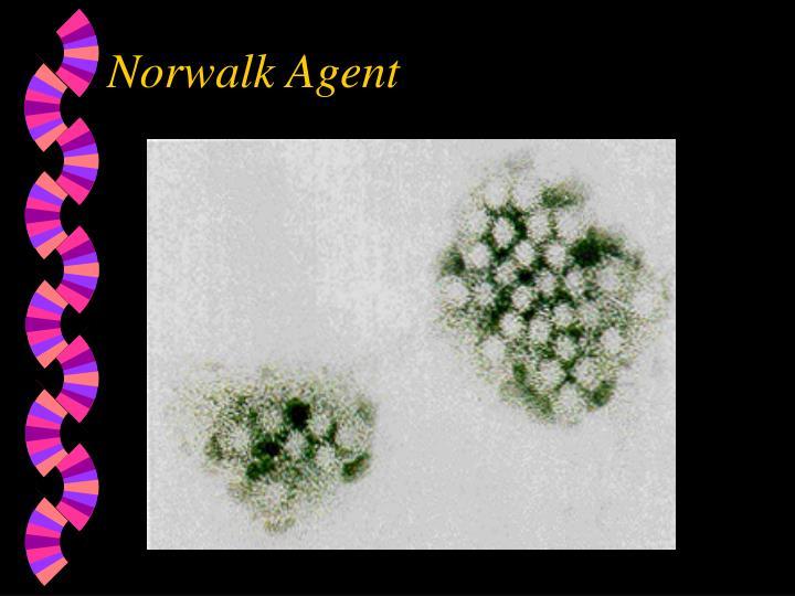 Norwalk Agent