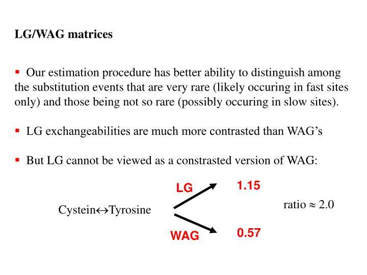 LG/WAG matrices