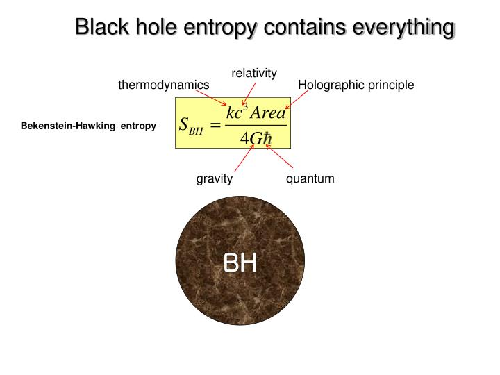 Black hole entropy contains everything