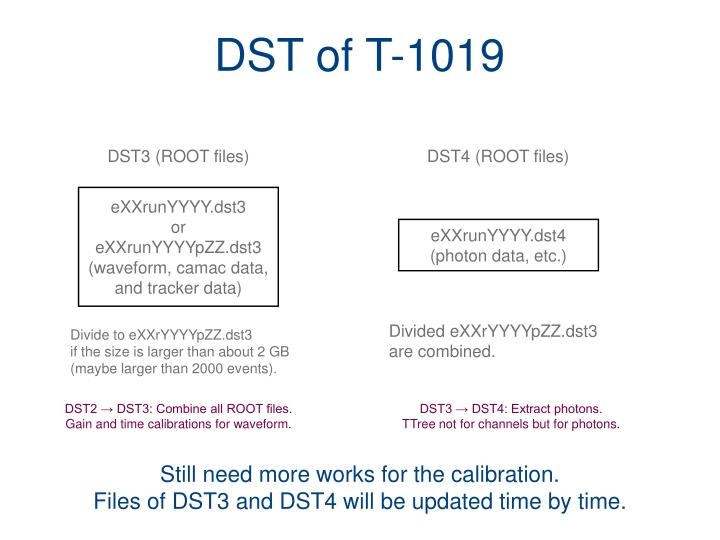 DST of T-1019