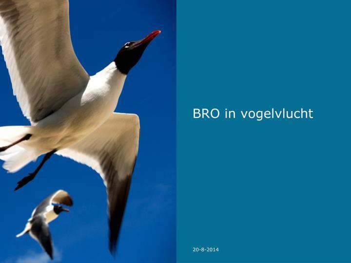 BRO in vogelvlucht