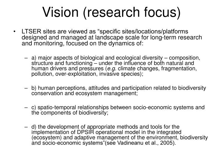 Vision (research focus)
