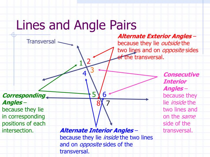 Lines and Angle Pairs