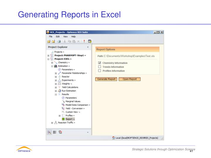 Generating Reports in Excel
