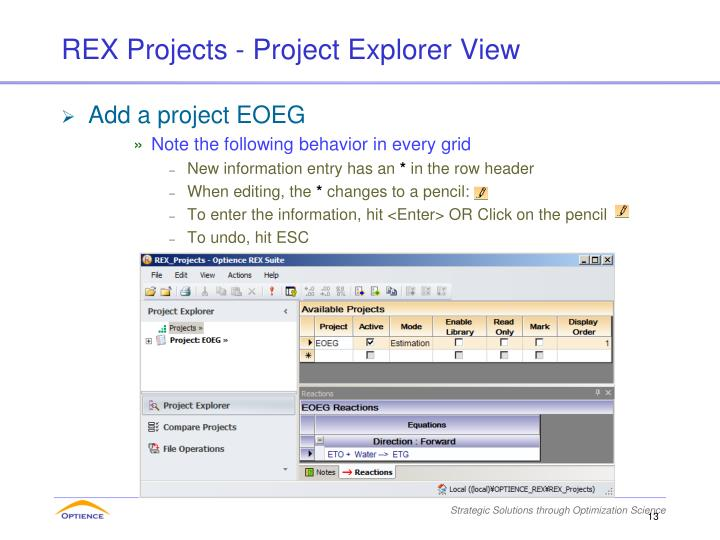 REX Projects - Project Explorer View