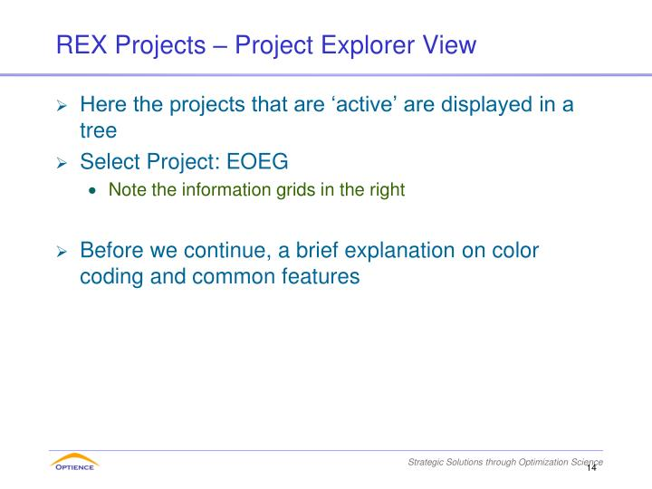 REX Projects – Project Explorer View