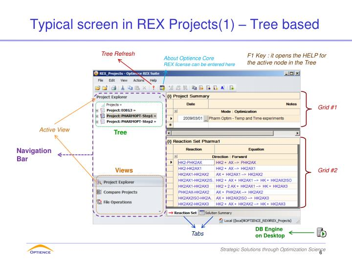 Typical screen in REX Projects(1) – Tree based