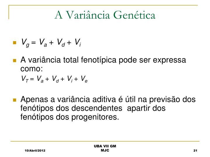 A Variância Genética