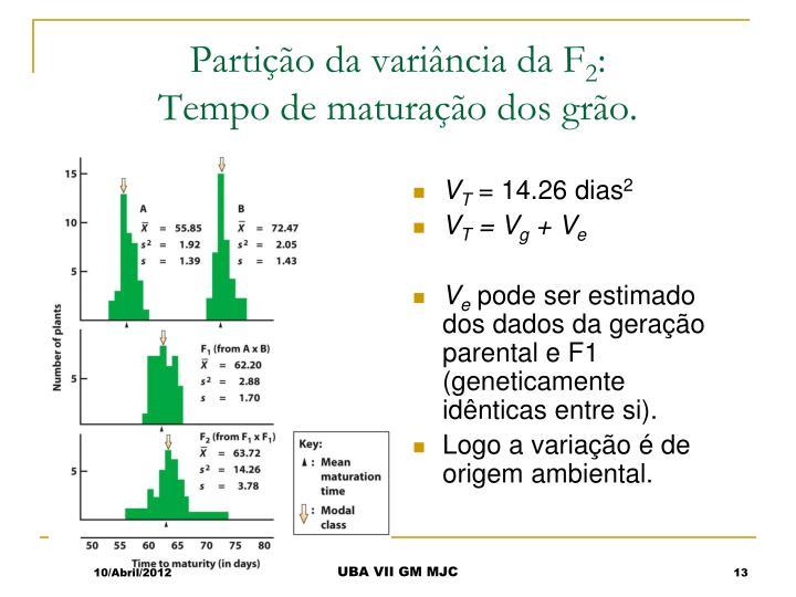 Partição da variância da F