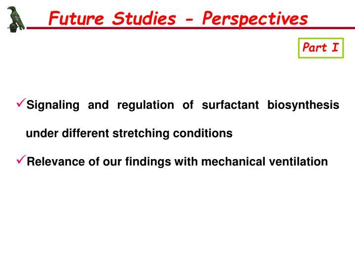Future Studies - Perspectives