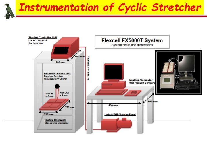 Instrumentation of Cyclic Stretcher