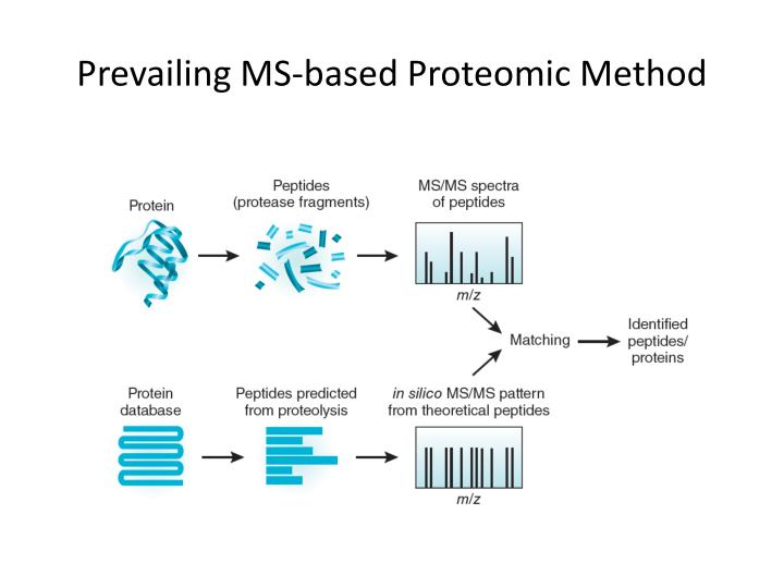 Prevailing MS-based Proteomic Method