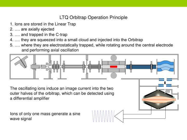 LTQ Orbitrap Operation Principle