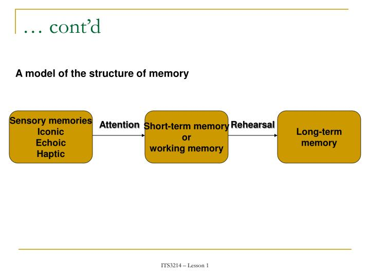Sensory memories