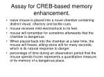 assay for creb based memory enhancement