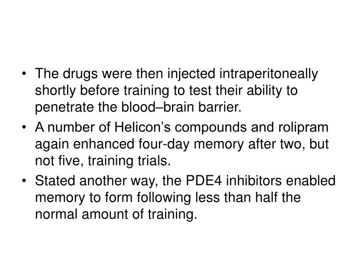 The drugs were then injected intraperitoneally shortly before training to test their ability to penetrate the blood–brain barrier.