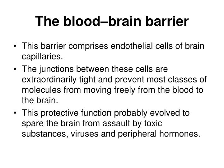 The blood–brain barrier
