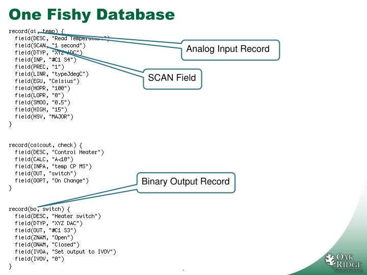 One Fishy Database