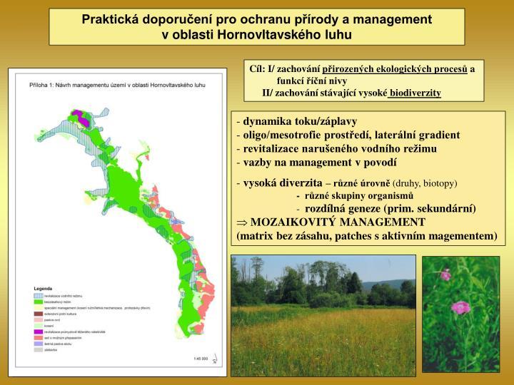 Praktická doporučení pro ochranu přírody a management voblasti Hornovltavského luhu