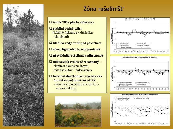 Zóna rašelinišť