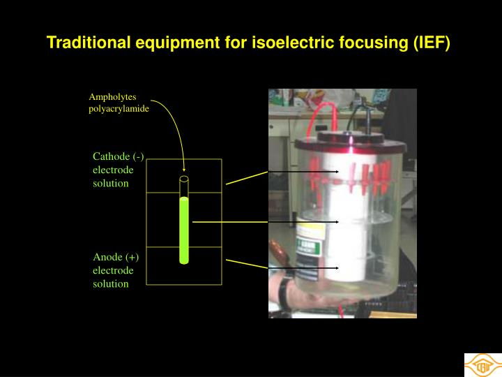 Traditional equipment for isoelectric focusing (IEF)