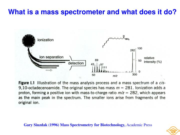 What is a mass spectrometer and what does it do?
