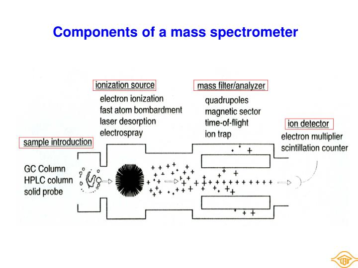 Components of a mass spectrometer