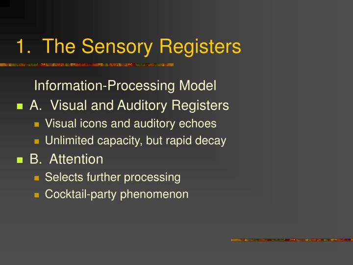 1.  The Sensory Registers