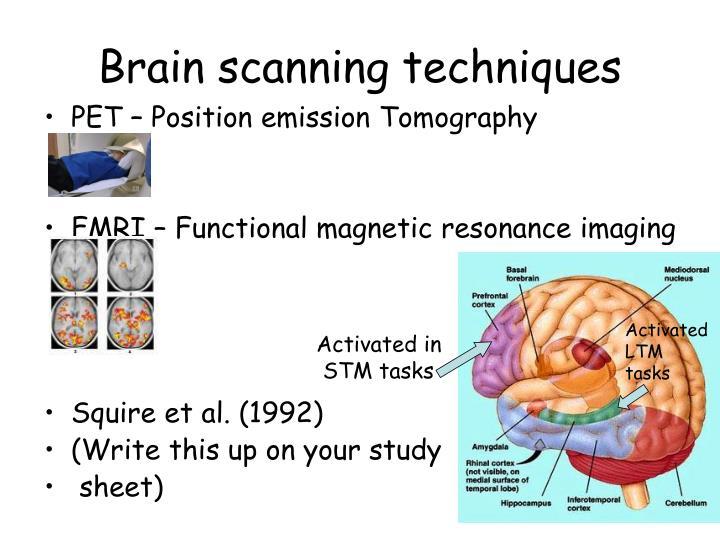 Brain scanning techniques