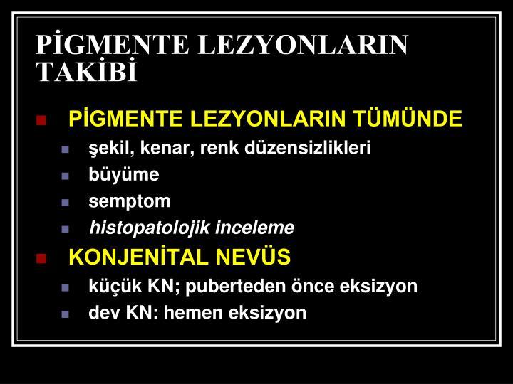 PİGMENTE LEZYONLARIN TAKİBİ