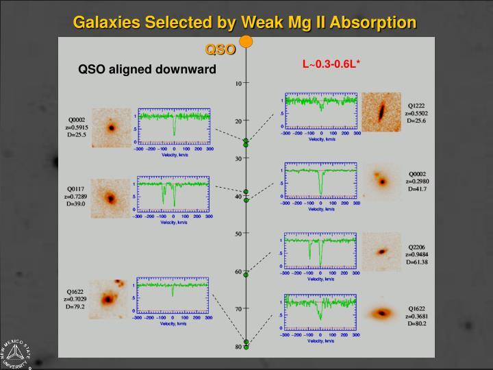 Galaxies Selected by Weak Mg II Absorption