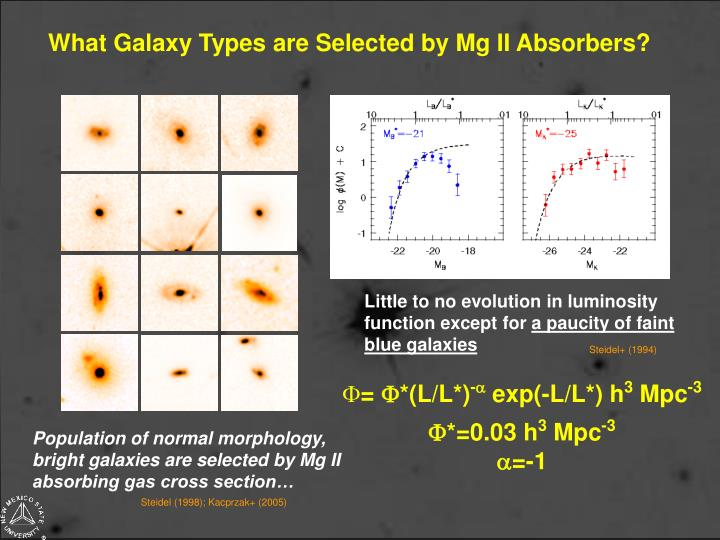 What Galaxy Types are Selected by Mg II Absorbers?