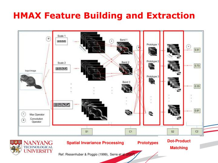 HMAX Feature Building and Extraction