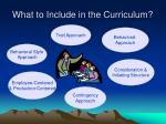 what to include in the curriculum