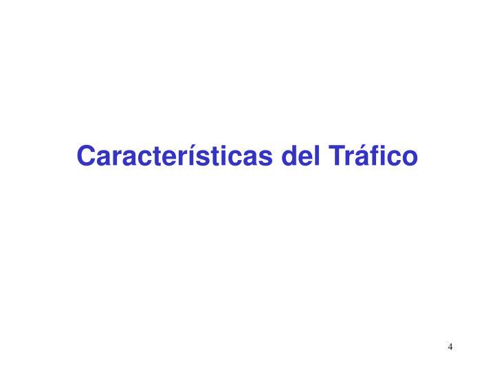 Características del Tráfico