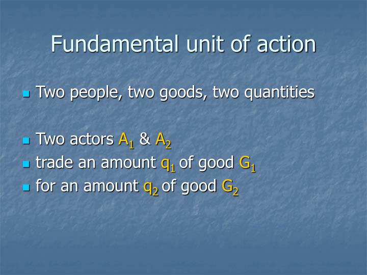 Fundamental unit of action