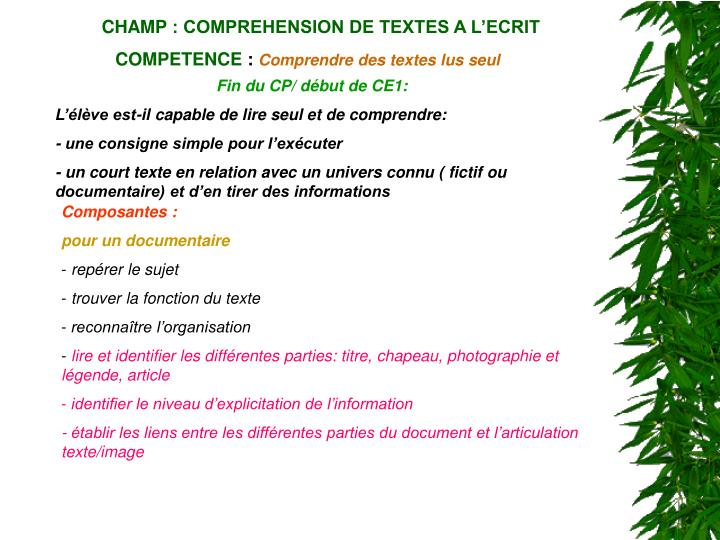 CHAMP: COMPREHENSION DE TEXTES A L'ECRIT