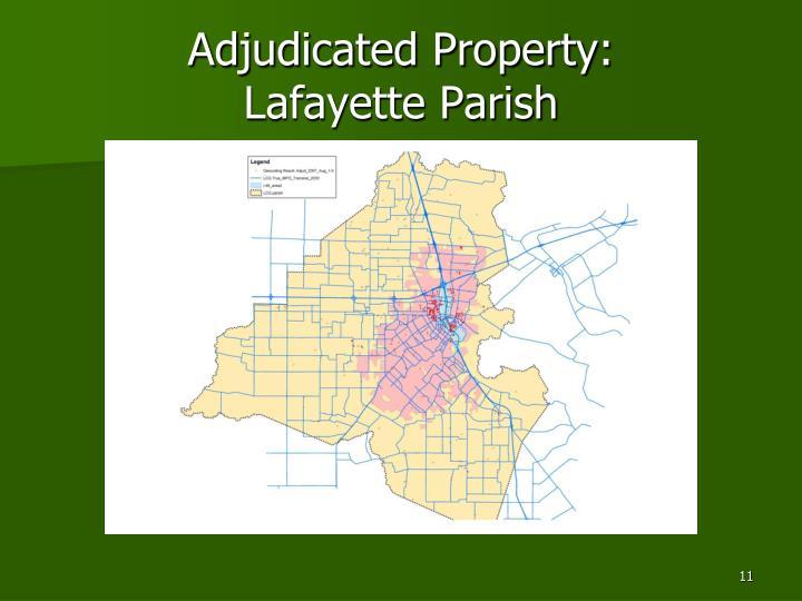 Adjudicated Property: