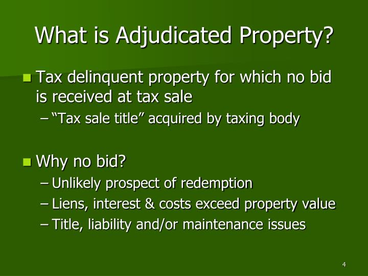 What is Adjudicated Property?